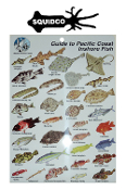 MLPA GUIDE TO PACIFIC COAST INSHORE FISH