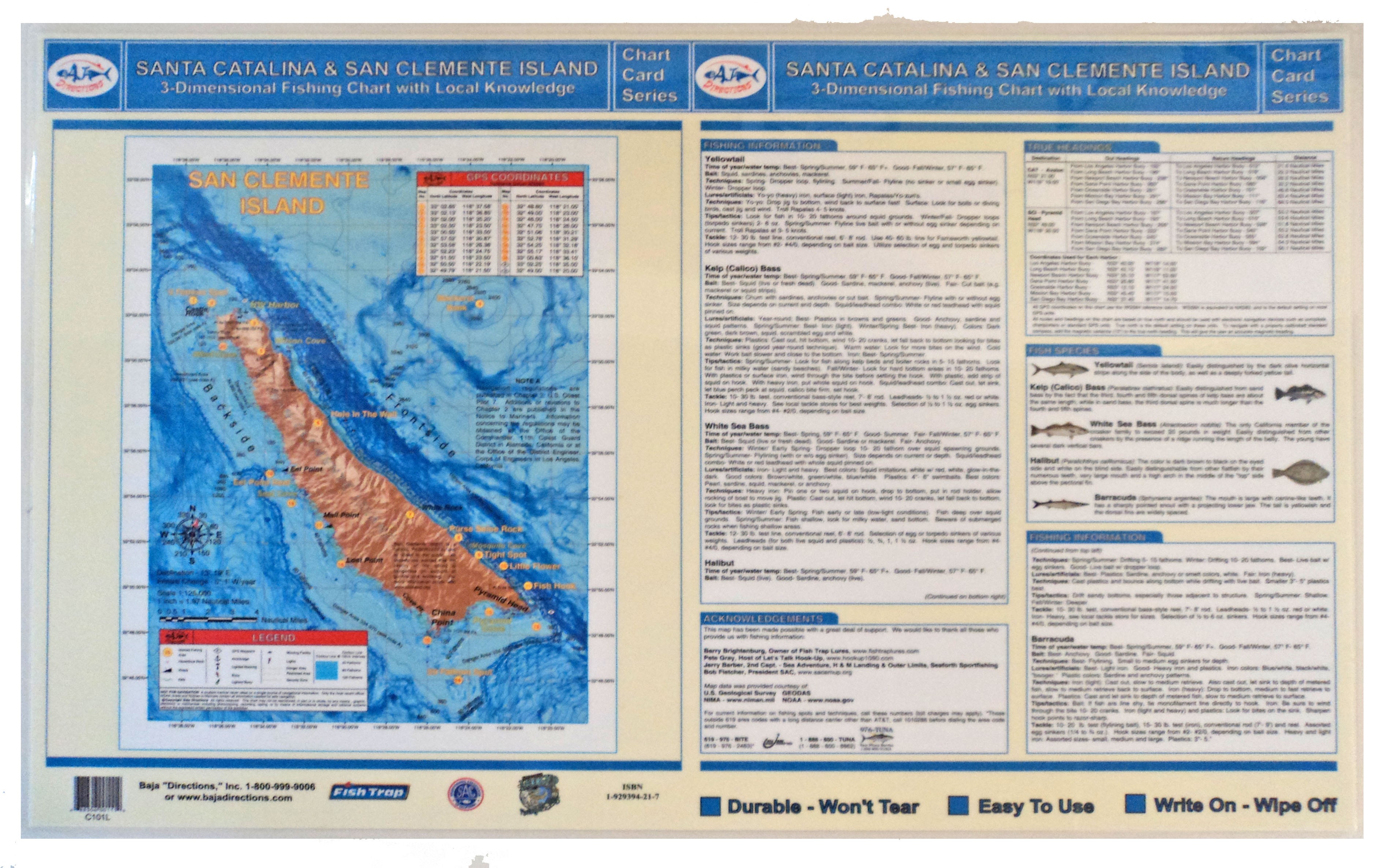 San quintin for Catalina island fishing report